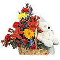 Send Flowers to Goa, Rakhi Gifts to Goa