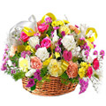 Flowers to Goa : Send Rakhi Flowers to Goa