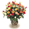 Send Flowers to Goa, Christmas Flowers to Goa