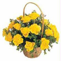 Flowers to Goa, Send Valentines Day Flowers to Goa